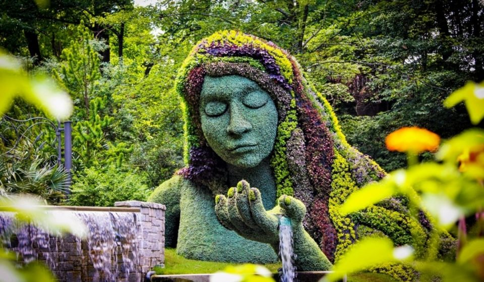 Earth Goddess Returns To Bloom At Atlanta Botanical Garden