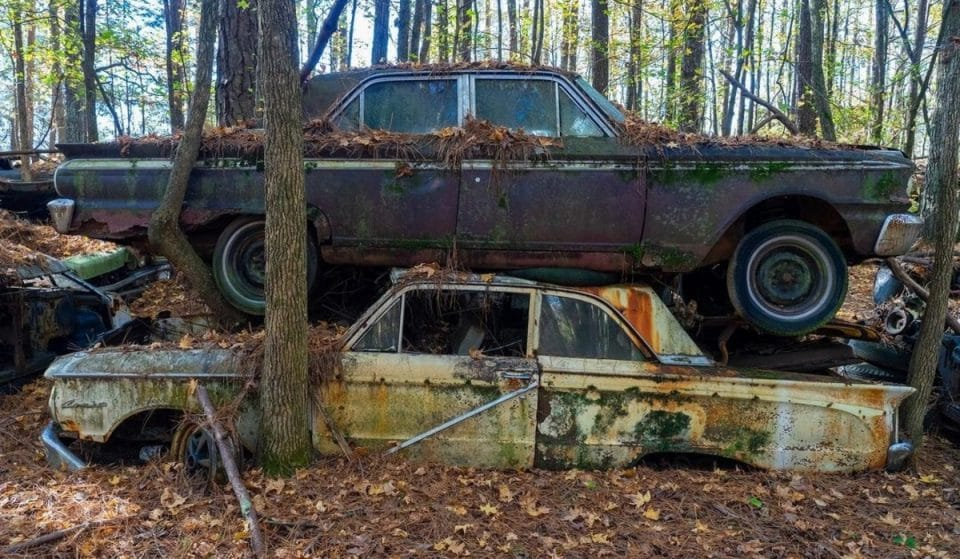 """This Old Car Junkyard Is Now A """"Photographer's Paradise"""""""