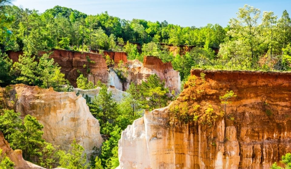 12 Weird And Wonderful Things To Do In Georgia