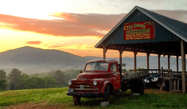 8 Enchanting Places To Go Apple Picking In Georgia